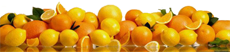 Oranges, Mandarins and Lemons